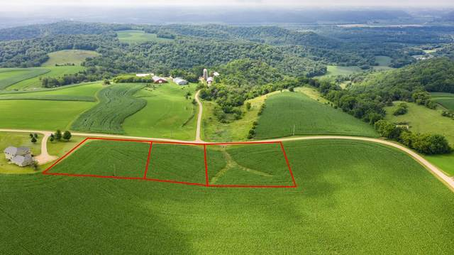 Lot 8 Bl 4 667th St, Wabasha, MN 55981 (#5571085) :: The Twin Cities Team