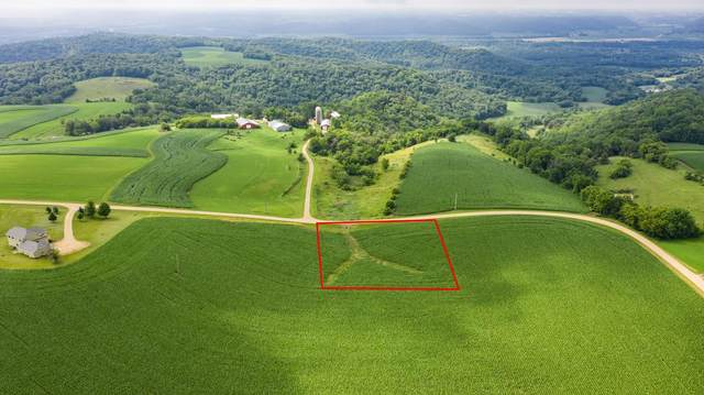 Lot 9 Bl 4 667th St, Wabasha, MN 55981 (#5571092) :: The Twin Cities Team