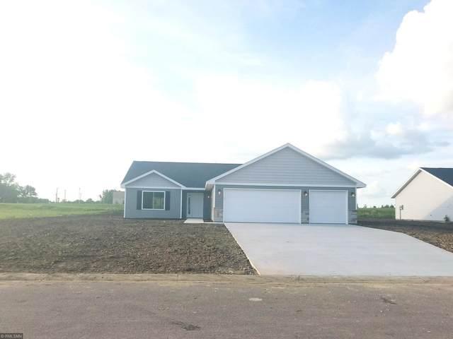 320 Horizon Drive, Le Center, MN 56057 (#5618488) :: The Preferred Home Team