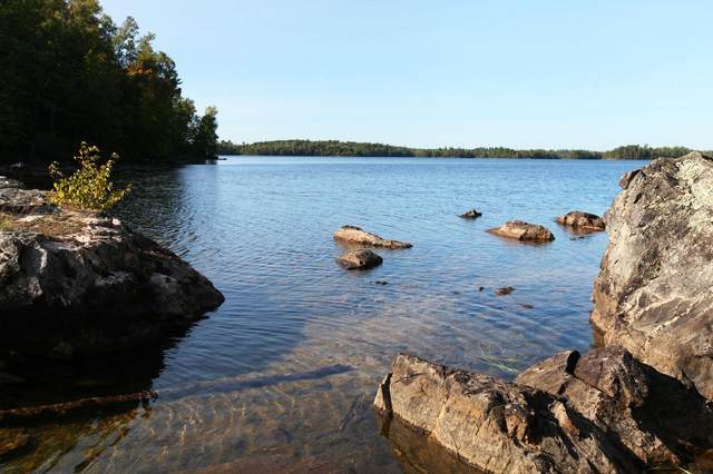 TBD Van Vac Rd, Ely, MN 55731 (#5649430) :: The Preferred Home Team