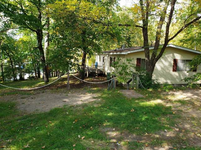 34589 Montour Drive, Pequot Lakes, MN 56472 (#5651077) :: Bos Realty Group