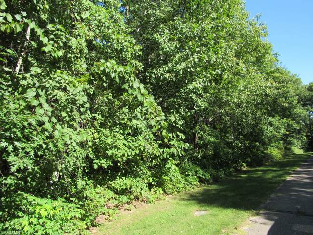 TBD SW Gull Lane, Fairview Twp, MN 56468 (#5652031) :: Twin Cities South
