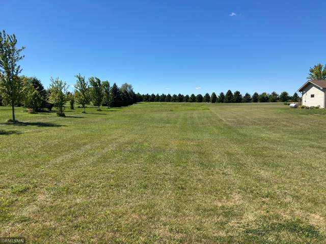 19 Lake Shetek Drive, Slayton, MN 56172 (#5652683) :: The Preferred Home Team
