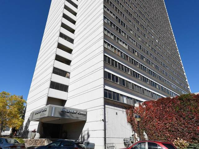 1920 S 1st Street #507, Minneapolis, MN 55454 (#5655560) :: Bos Realty Group