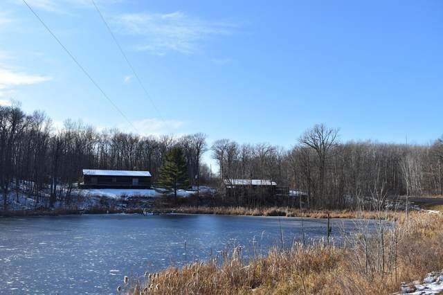 21785 County Road 10, Deerwood, MN 56444 (#5680444) :: The Pietig Properties Group