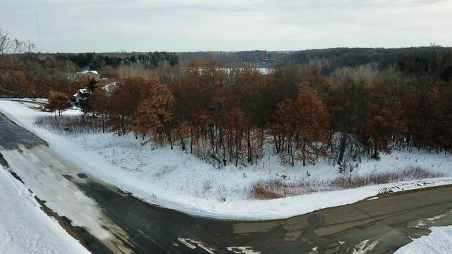 XXX 236th Avenue NW, Orrock Twp, MN 55309 (#5699058) :: Bos Realty Group