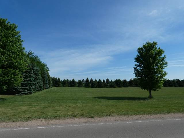 68 Valhalla Road, Slayton, MN 56172 (#5705308) :: Twin Cities South