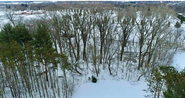 320 Sugarloaf Parkway, Zumbrota, MN 55992 (#5711821) :: Holz Group