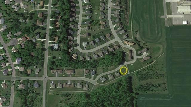 336 Jefferson Lane, Saint Joseph, MN 56374 (#5716751) :: Twin Cities South