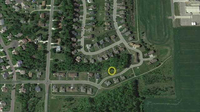 345 Jefferson Lane, Saint Joseph, MN 56374 (#5716797) :: Twin Cities South