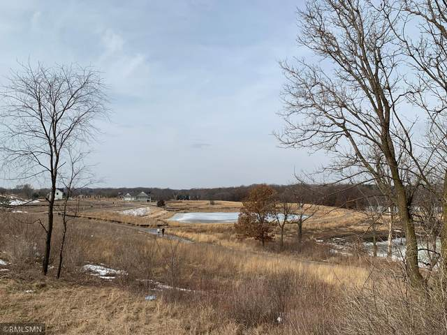 11384 Blazingstar Lane, Lake Elmo, MN 55042 (#5718208) :: The Pietig Properties Group