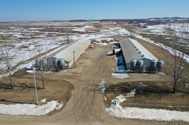 TBD County Road 132, Dover Twp, MN 55929 (#5721232) :: Twin Cities South
