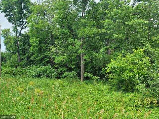 xxx W Fawn Lake Rd, Linwood Twp, MN 55079 (#5721595) :: The Twin Cities Team