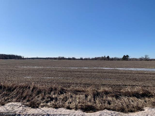 xxxxx 233rd Avenue Avenue, Mora, MN 55051 (#5723696) :: Lakes Country Realty LLC