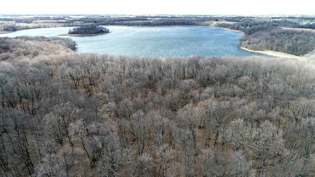XXX 685th Avenue, Dassel, MN 55325 (#5731000) :: Lakes Country Realty LLC