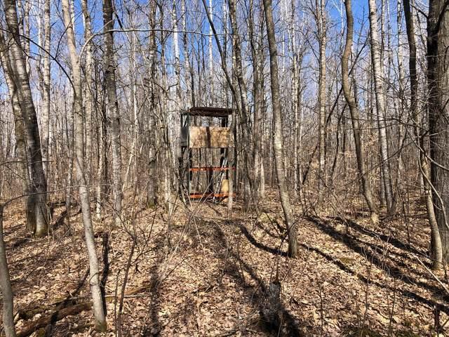 33553 Sportsmans Lane, Brook Park, MN 55007 (#5734103) :: Holz Group