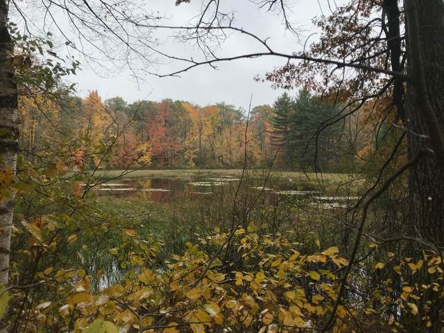 Lot 112 162nd Avenue, Apple River Twp, WI 54810 (#5736266) :: Twin Cities Elite Real Estate Group | TheMLSonline