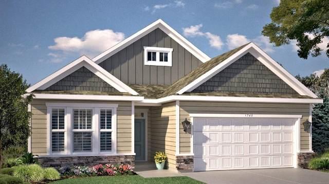 19386 Grass  Lake Trail, Rogers, MN 55374 (#5737451) :: Straka Real Estate