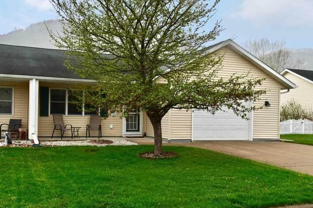 8125 6th Street, Minnesota City, MN 55959 (#5738797) :: Lakes Country Realty LLC