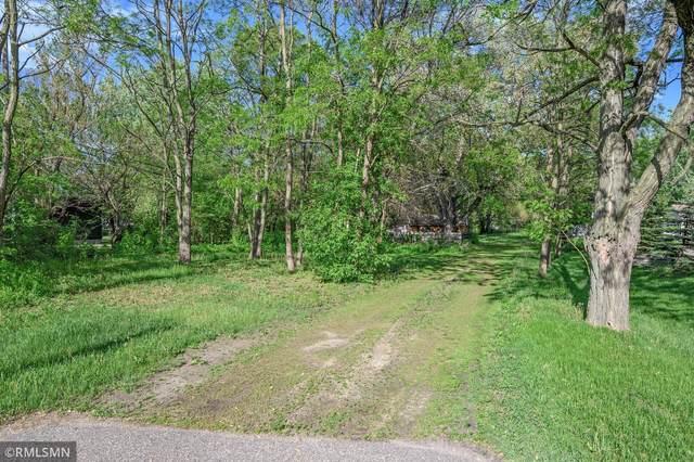 4442 Hodgson Road, Shoreview, MN 55126 (#5757145) :: Carol Nelson | Edina Realty