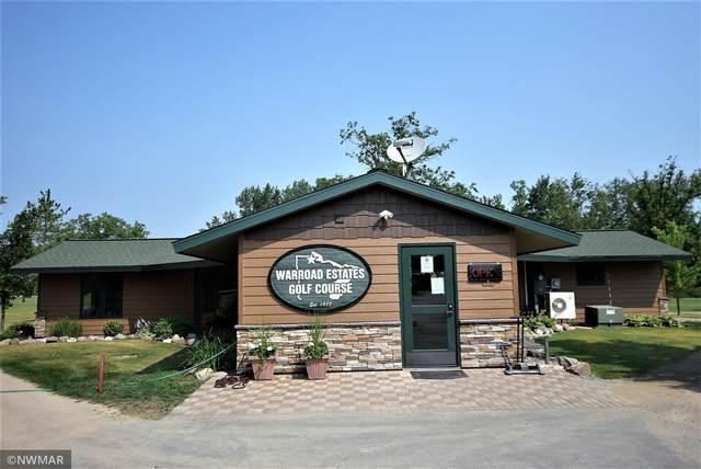 37293 Elm Dr NE, Lake Twp, MN 56763 (#6027074) :: Happy Clients Realty Advisors