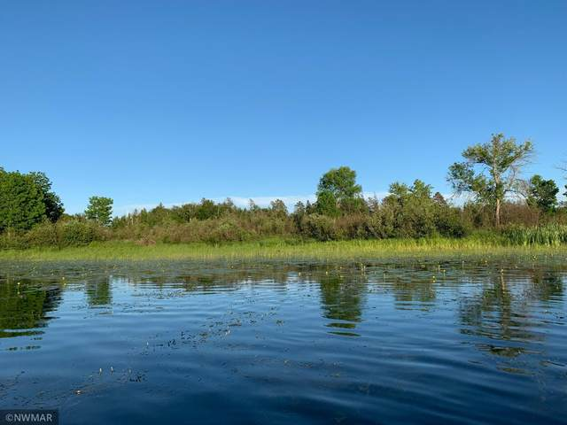 TBD Lot 27 Peninsula Court NE, Bemidji, MN 56601 (#6027901) :: Lakes Country Realty LLC