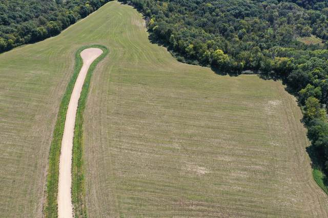 Lot 31 817th Avenue, River Falls, WI 54022 (#6097759) :: Twin Cities South