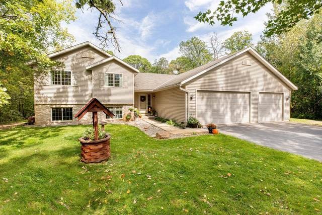 14144 314th Avenue NW, Princeton, MN 55371 (#6100634) :: Reliance Realty Advisers