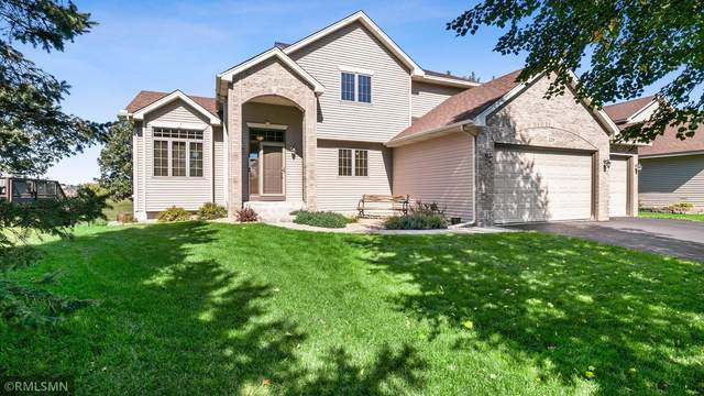 229 141st Avenue NW, Andover, MN 55304 (#6103637) :: Twin Cities Elite Real Estate Group | TheMLSonline