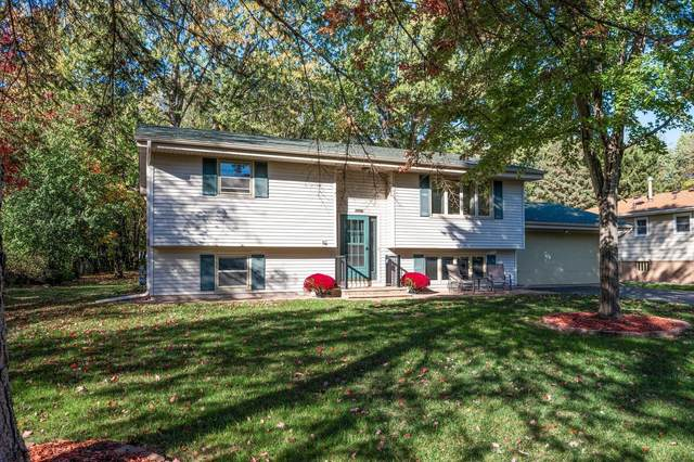 7996 Greenwood Drive, Mounds View, MN 55112 (#6114952) :: Holz Group