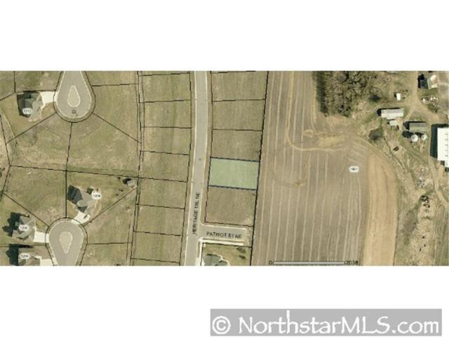 1002 Heritage Trail NE, New Prague, MN 56071 (#3991539) :: The Preferred Home Team