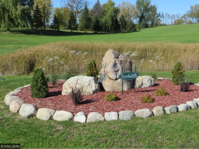 3812 Schefers Court, Independence, MN 55359 (#4671382) :: The Preferred Home Team