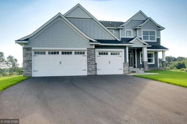 6586 Enid Trail, Lino Lakes, MN 55014 (#4910161) :: The Snyder Team