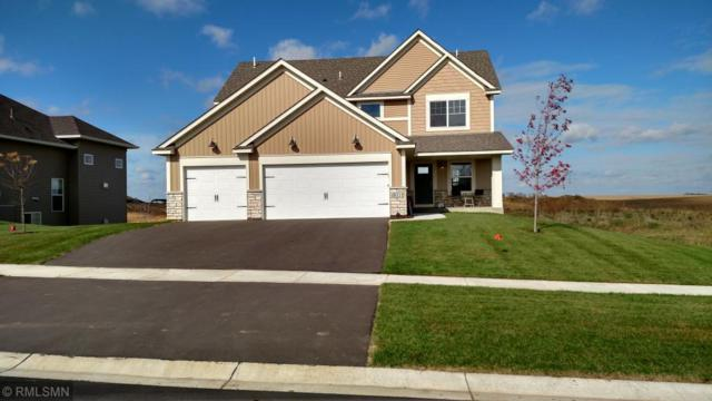 8111 200th Street W, Lakeville, MN 55044 (#4910852) :: The Sarenpa Team