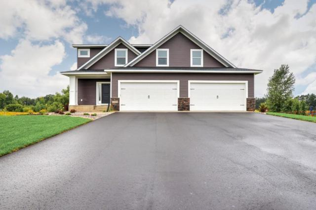 12295 282nd Avenue NW, Baldwin Twp, MN 55398 (#4994456) :: The Snyder Team