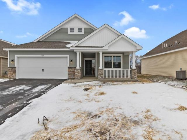 8255 63rd Street S, Cottage Grove, MN 55016 (#5007038) :: The Snyder Team