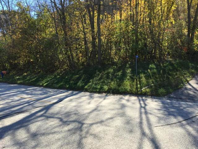 Lot 10, 11 County 77, Reads Landing, MN 55968 (#5136564) :: Twin Cities Elite Real Estate Group | TheMLSonline