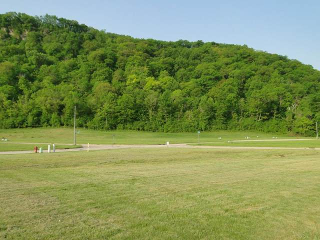 594 Cedar Drive, Lake City, MN 55041 (#5201558) :: Straka Real Estate