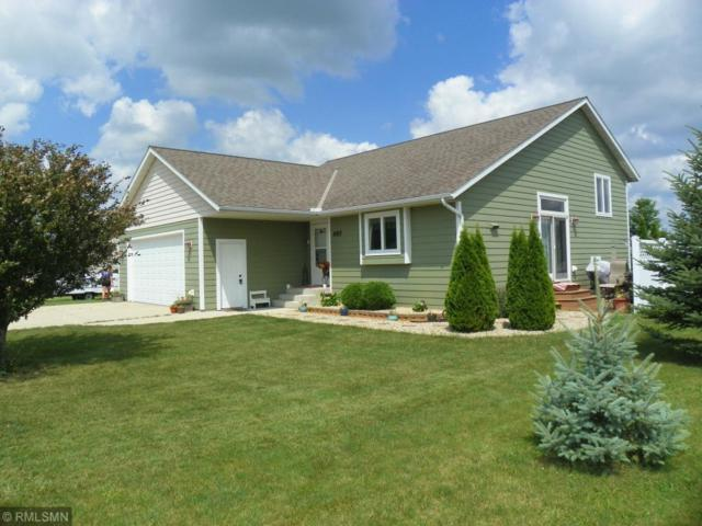 685 Douglas Drive, Eden Valley, MN 55329 (MLS #5238604) :: The Hergenrother Realty Group