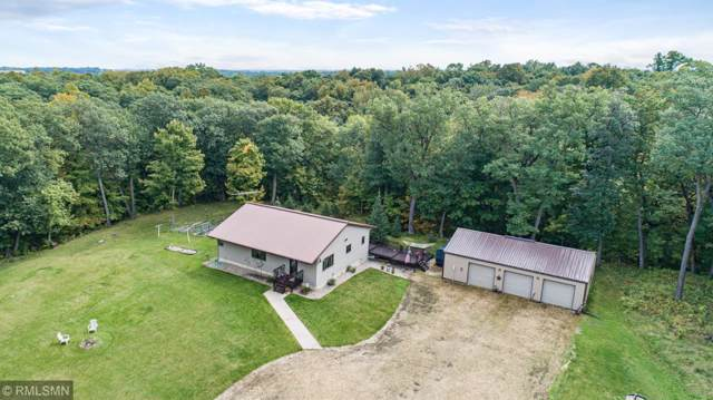 445 Country View Lane, Le Sueur, MN 56058 (#5276352) :: The Odd Couple Team
