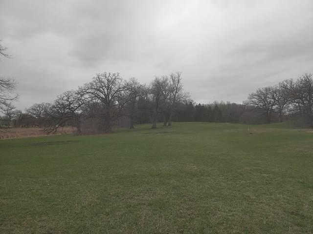 17455 Oak Hills Lane, Carver, MN 55315 (#5609873) :: Lakes Country Realty LLC
