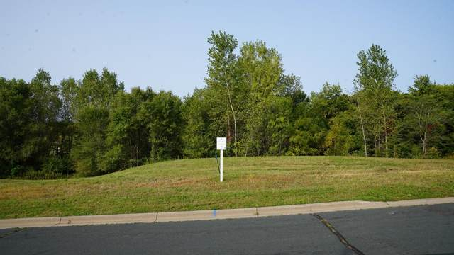 2700 Woodcliffe Trail, Hastings, MN 55033 (#5637864) :: Holz Group