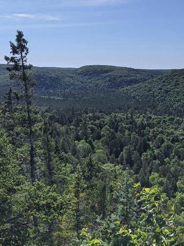 xx Pine Peak Road, Lutsen Twp, MN 55612 (#5642287) :: Lakes Country Realty LLC