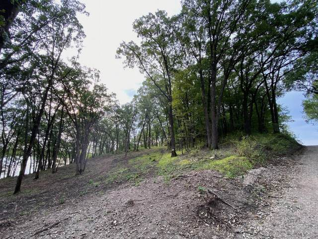Lot 2 Hwy 9 NW, Sunburg, MN 56289 (#5654728) :: Holz Group