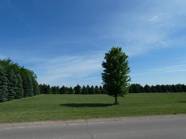 76 Valhalla Road, Slayton, MN 56172 (#5705374) :: Twin Cities South