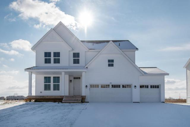 6601 96th Street S, Cottage Grove, MN 55016 (#4991672) :: The Hergenrother Group North Suburban