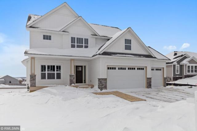 20153 Harvest Drive, Lakeville, MN 55044 (#5134748) :: The Preferred Home Team