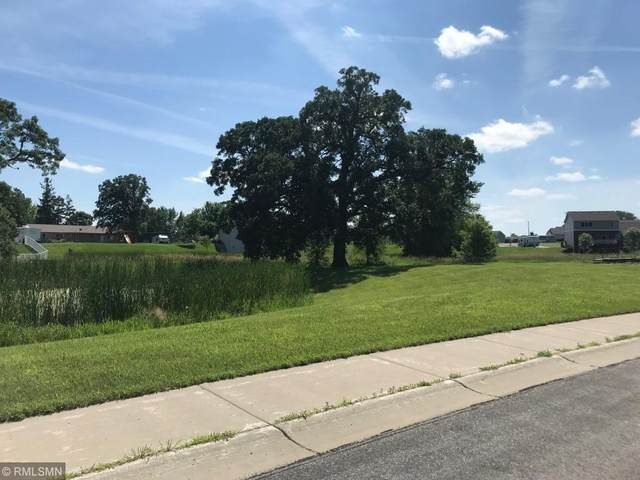 808 2nd Avenue, Albany, MN 56307 (#5137401) :: Twin Cities South