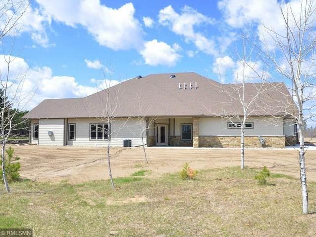 12351 Blueberry Loop, Menahga, MN 56464 (MLS #5729568) :: RE/MAX Signature Properties