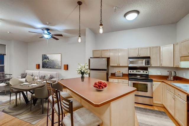 308 E 18th Street #204, Minneapolis, MN 55404 (#5746956) :: Holz Group